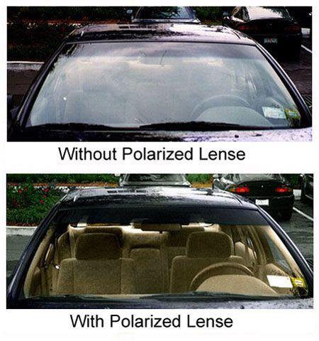 Polarizedoncar